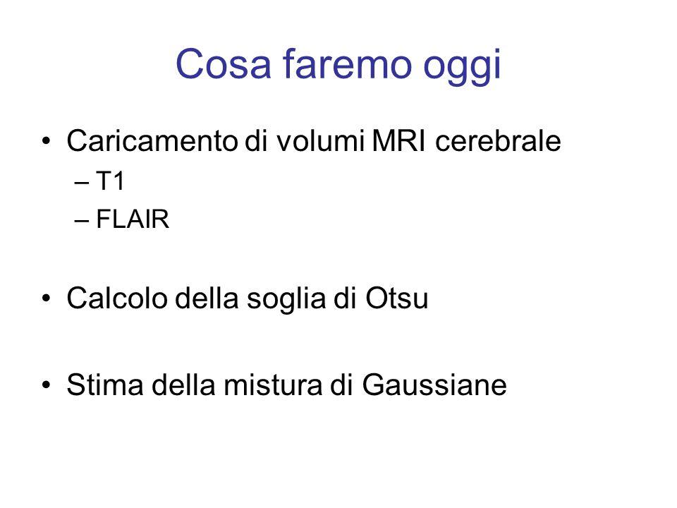 Caricamento Sono a disposizione due file NIFTI: T1.nii e FLAIR.nii Dopo averli caricati, dal momento che le unità di misura dei dati MRI sono arbitrari, conviene: - estrarre una fetta campione su cui lavorare - normalizzare i dati: % Estraggo i dati dellimmagine dalla struttura NIFTI xT1=T1.img; % Estraggo una fetta campione xim=xT1(:,:,70); % Normalizzo di dati I=xim/max(xim(:));