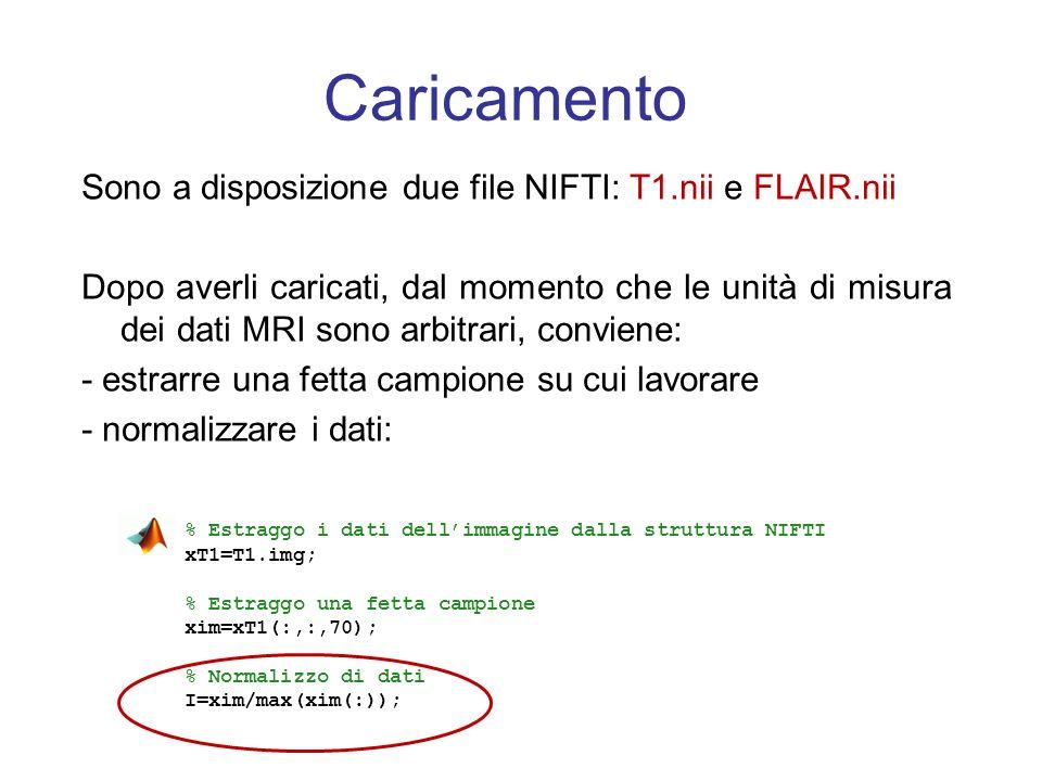 Caricamento Sono a disposizione due file NIFTI: T1.nii e FLAIR.nii Dopo averli caricati, dal momento che le unità di misura dei dati MRI sono arbitrar