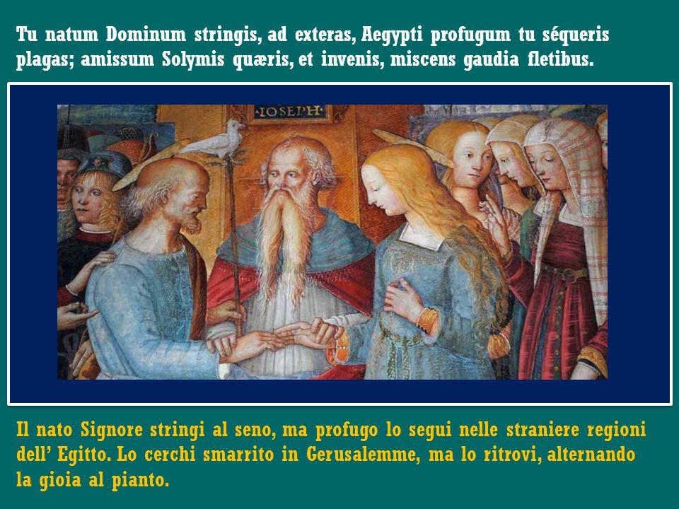 Papa Francesco Omelia della Messa nella solennità di San Giuseppe Basilica di S. Pietro in Vaticano 19 marzo 2013 Papa Francesco Omelia della Messa ne