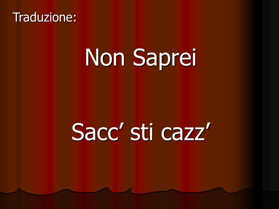 Non Saprei Sacc sti cazz Traduzione: