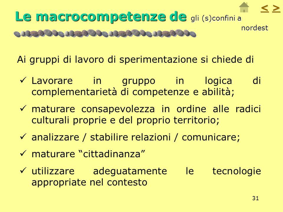 31 Le macrocompetenze de gli (s)confini a nordest Lavorare in gruppo in logica di complementarietà di competenze e abilità; maturare consapevolezza in