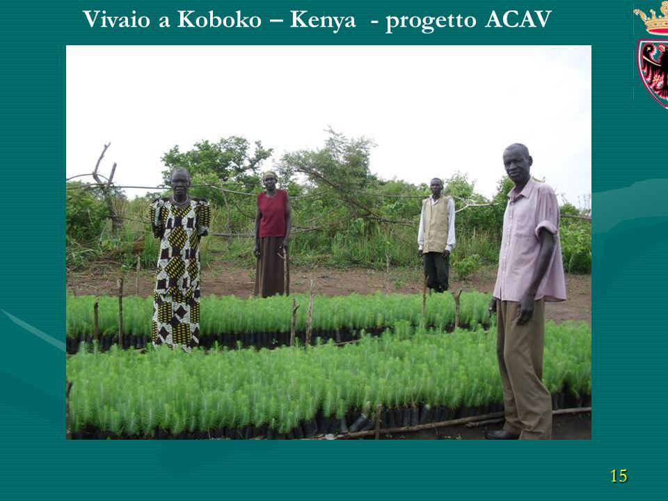 15 Vivaio a Koboko – Kenya - progetto ACAV