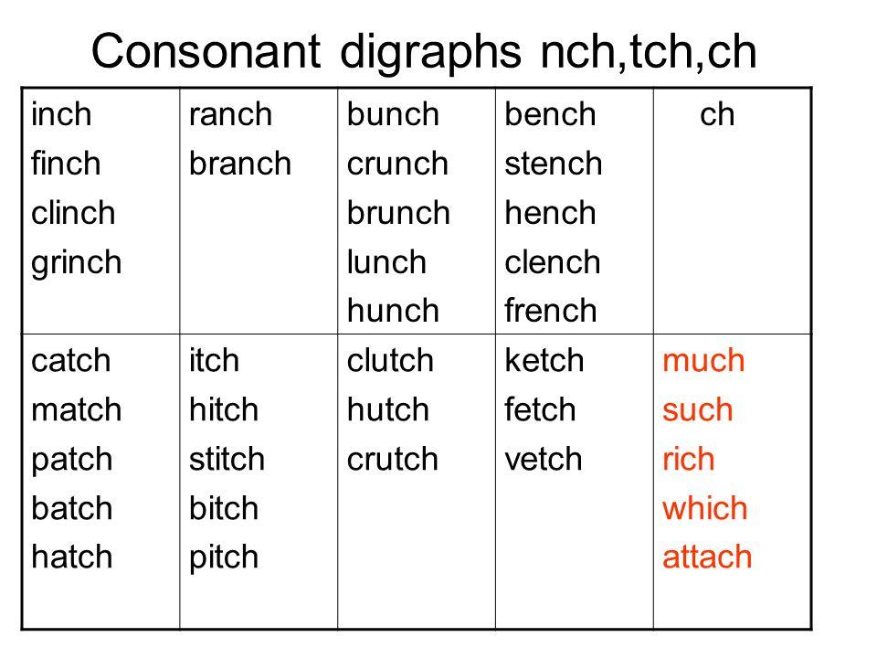 Consonant digraphs nch,tch,ch inch finch clinch grinch ranch branch bunch crunch brunch lunch hunch bench stench hench clench french ch catch match pa