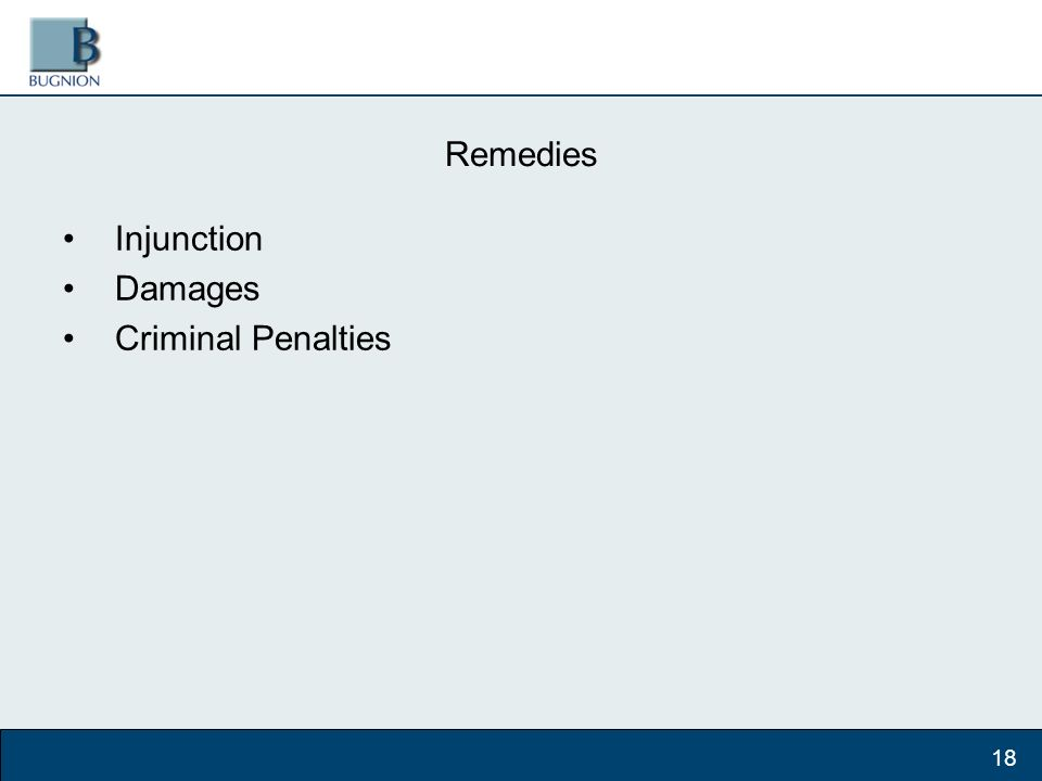 Remedies Injunction Damages Criminal Penalties 18