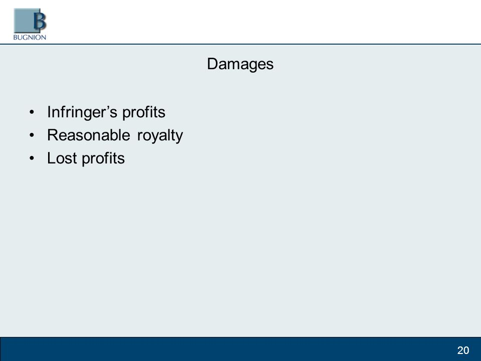 Damages Infringers profits Reasonable royalty Lost profits 20