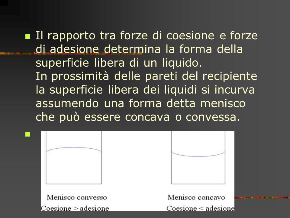 Il rapporto tra forze di coesione e forze di adesione determina la forma della superficie libera di un liquido. In prossimità delle pareti del recipie