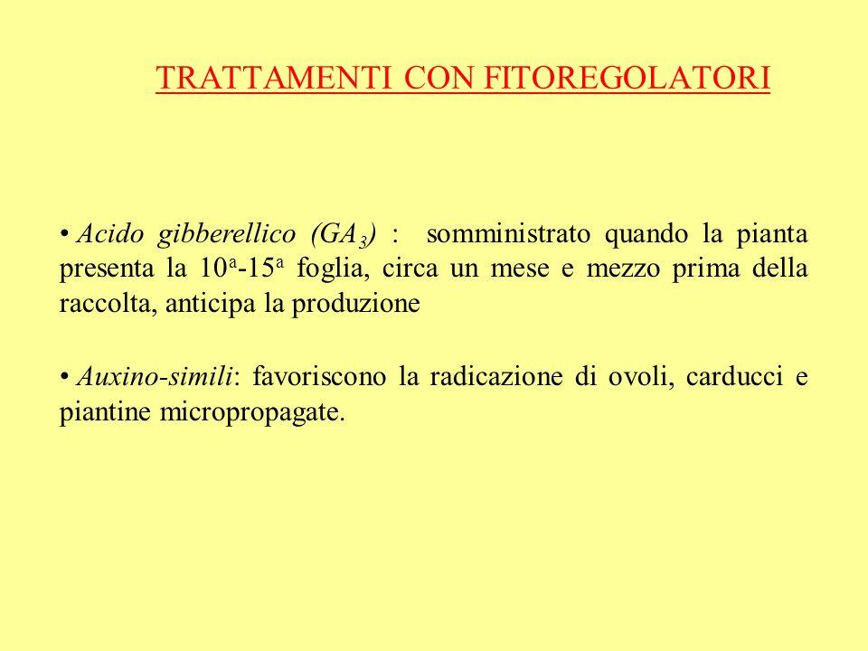 TRATTAMENTI CON FITOREGOLATORI Acido gibberellico (GA 3 ) : somministrato quando la pianta presenta la 10 a -15 a foglia, circa un mese e mezzo prima
