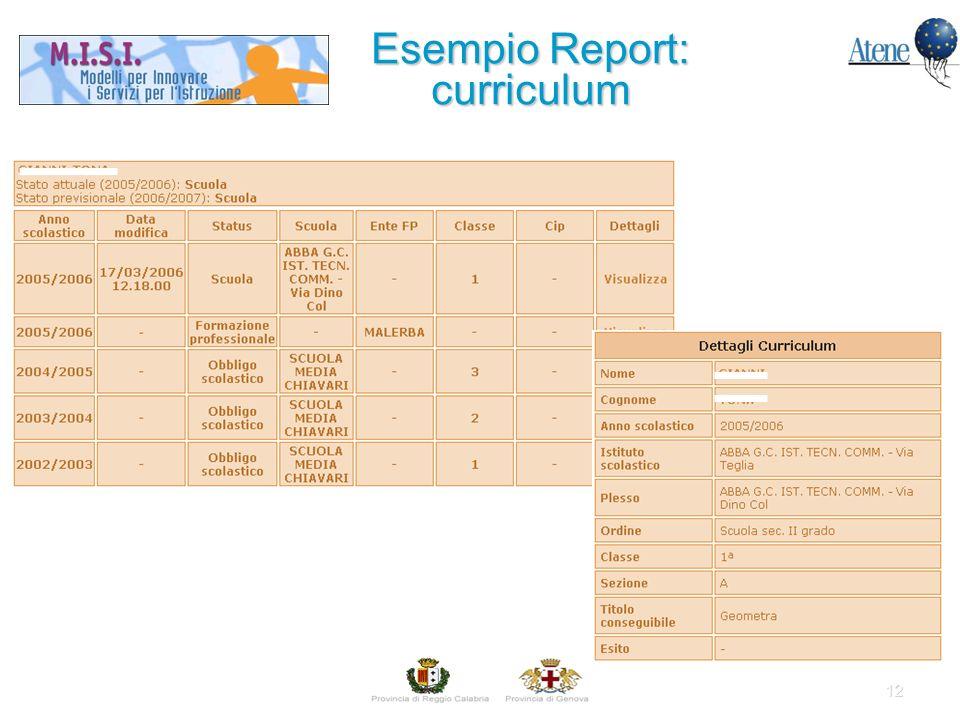 12 Esempio Report: curriculum