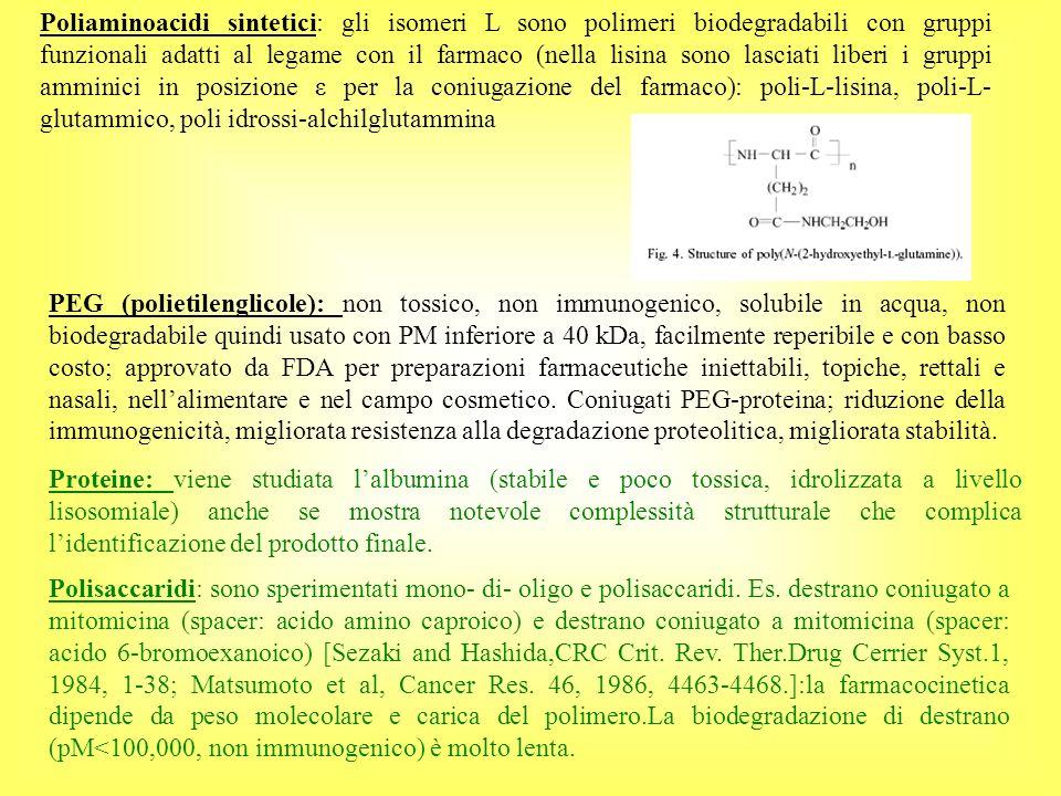Poliaminoacidi sintetici: gli isomeri L sono polimeri biodegradabili con gruppi funzionali adatti al legame con il farmaco (nella lisina sono lasciati liberi i gruppi amminici in posizione ε per la coniugazione del farmaco): poli-L-lisina, poli-L- glutammico, poli idrossi-alchilglutammina Polisaccaridi: sono sperimentati mono- di- oligo e polisaccaridi.