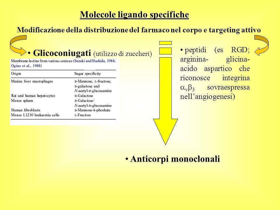 Modificazione della distribuzione del farmaco nel corpo e targeting attivo Molecole ligando specifiche Anticorpi monoclonali Glicoconiugati (utilizzo di zuccheri) peptidi (es RGD; arginina- glicina- acido aspartico che riconosce integrina v 3 sovraespressa nellangiogenesi)