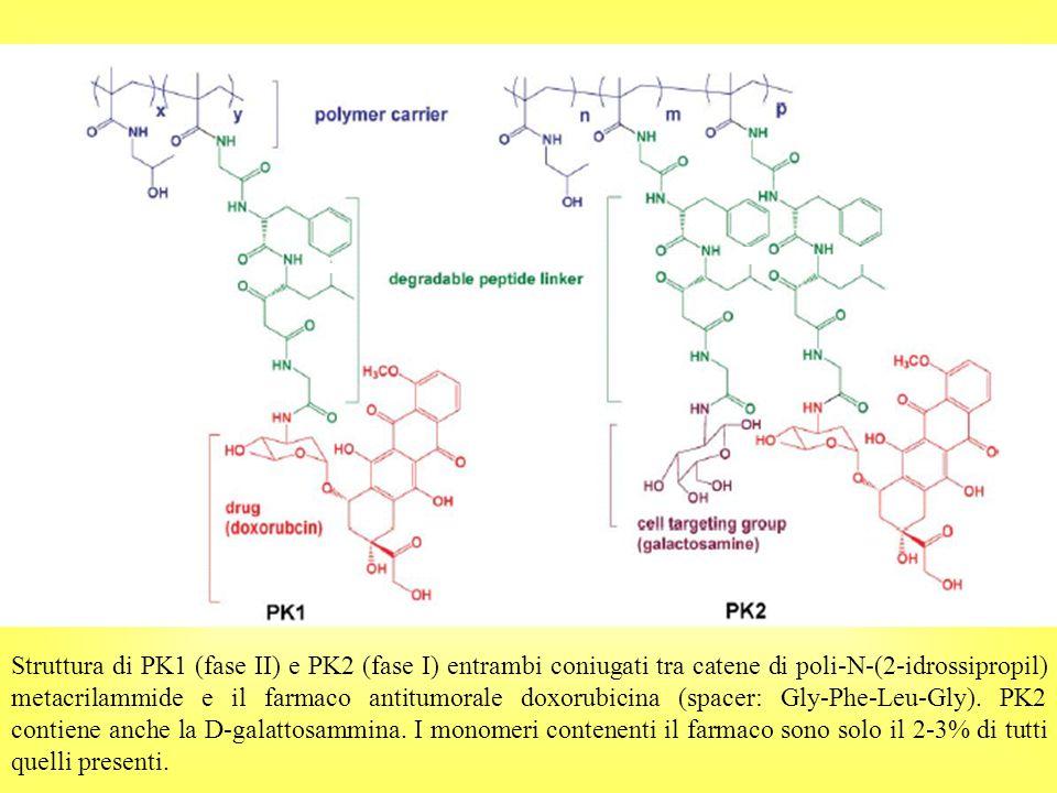 Gly-Phe-Leu-Gly Struttura di PK1 (fase II) e PK2 (fase I) entrambi coniugati tra catene di poli-N-(2-idrossipropil) metacrilammide e il farmaco antitumorale doxorubicina (spacer: Gly-Phe-Leu-Gly).