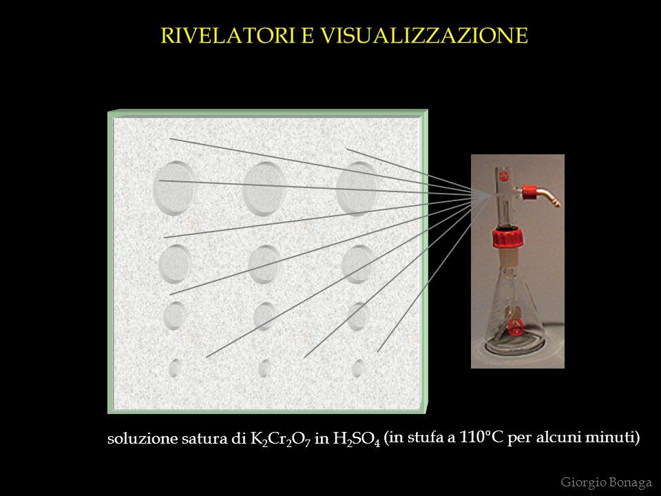 soluzione satura di K 2 Cr 2 O 7 in H 2 SO 4 (in stufa a 110°C per alcuni minuti) RIVELATORI E VISUALIZZAZIONE Giorgio Bonaga