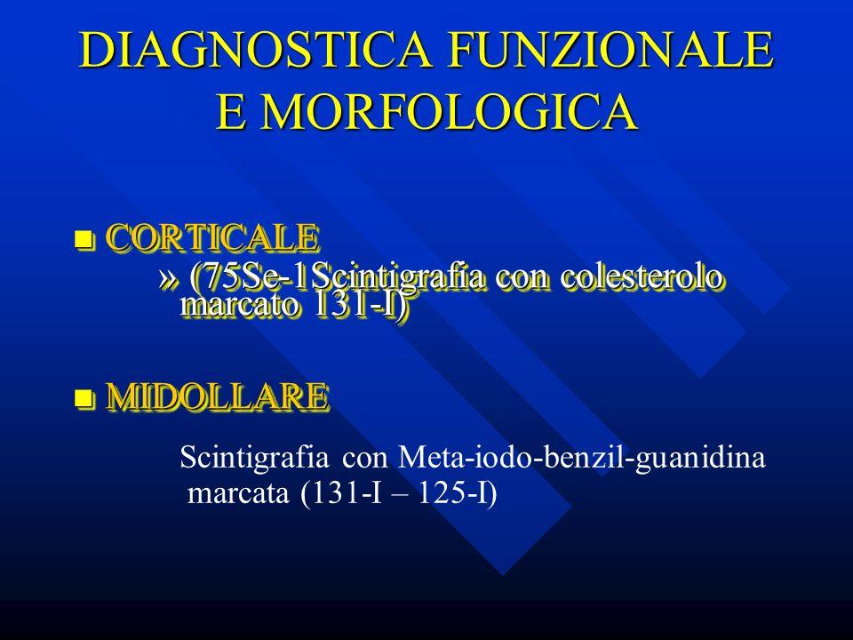 DIAGNOSTICA FUNZIONALE E MORFOLOGICA CORTICALE CORTICALE » (75Se-1Scintigrafia con colesterolo marcato 131-I) MIDOLLARE MIDOLLARE CORTICALE CORTICALE