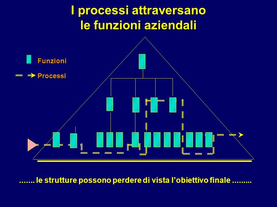 FunzioniProcessi....... le strutture possono perdere di vista lobiettivo finale.........