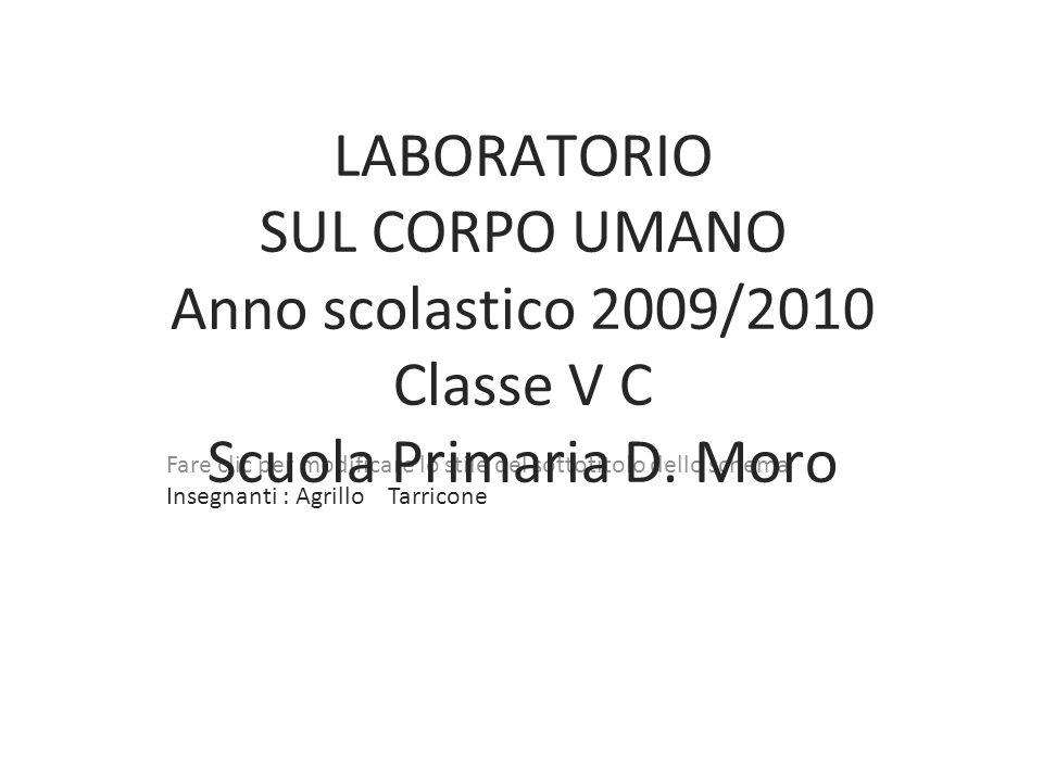 Fare clic per modificare lo stile del sottotitolo dello schema LABORATORIO SUL CORPO UMANO Anno scolastico 2009/2010 Classe V C Scuola Primaria D. Mor