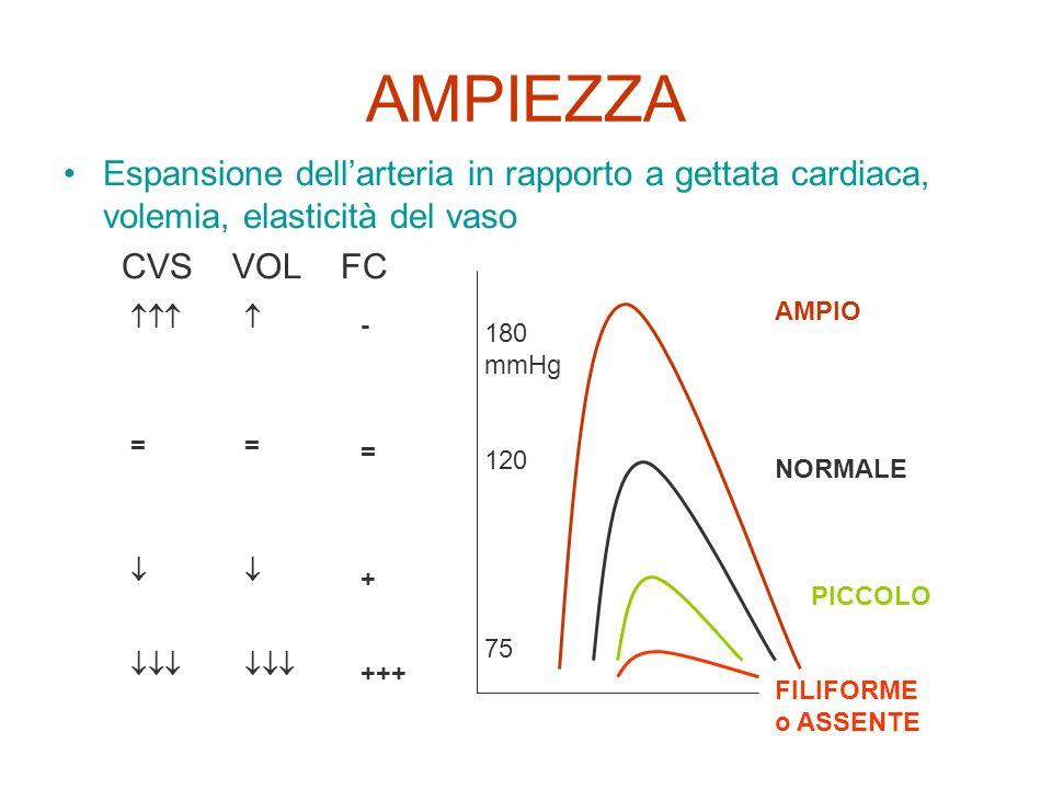 AMPIEZZA Espansione dellarteria in rapporto a gettata cardiaca, volemia, elasticità del vaso CVS VOL FC 180 mmHg 120 75 AMPIO NORMALE PICCOLO FILIFORM