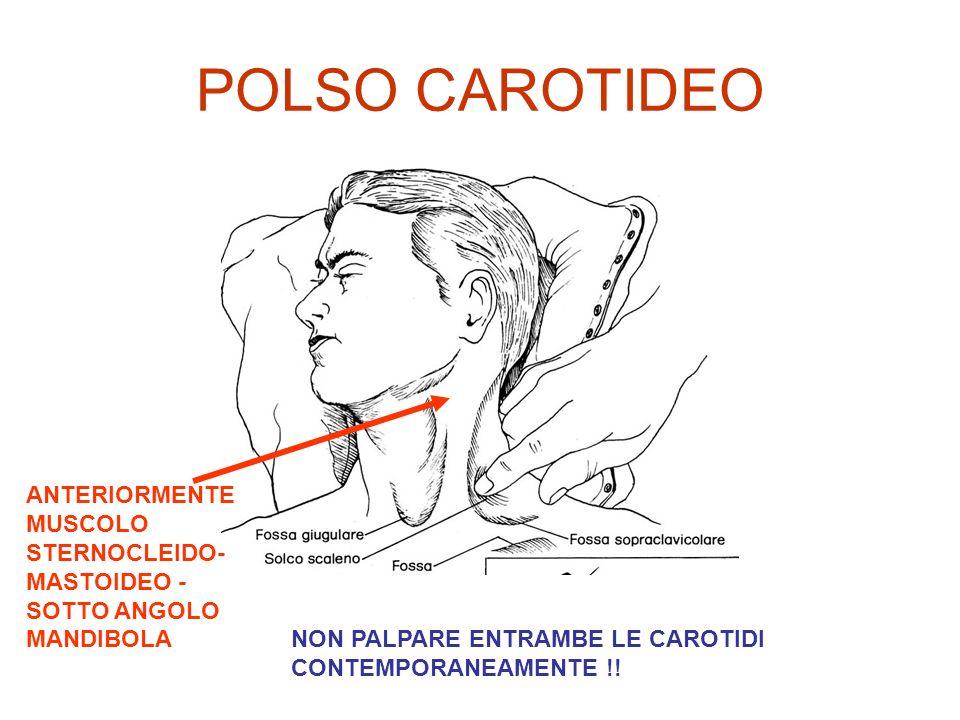 POLSO CAROTIDEO ANTERIORMENTE MUSCOLO STERNOCLEIDO- MASTOIDEO - SOTTO ANGOLO MANDIBOLA NON PALPARE ENTRAMBE LE CAROTIDI CONTEMPORANEAMENTE !!
