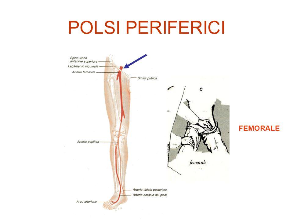 FREQUENZA NORMOSFIGMIA nelladulto 60-80 bpm TACHISFIGMIA> 80 bpm BRADISFIGMIA< 60 bpm POLSO RARO< 40 bpm blocco AV 3° grado bradicardia sinusale ritmo idioventricolare farmaci DEFICIT DEL POLSO: frequenza cardiaca > frequenza misurata al polso periferico = Sistole inadeguata da fibrillazione atriale battito extrasistolico prematuro con sistole non condotta