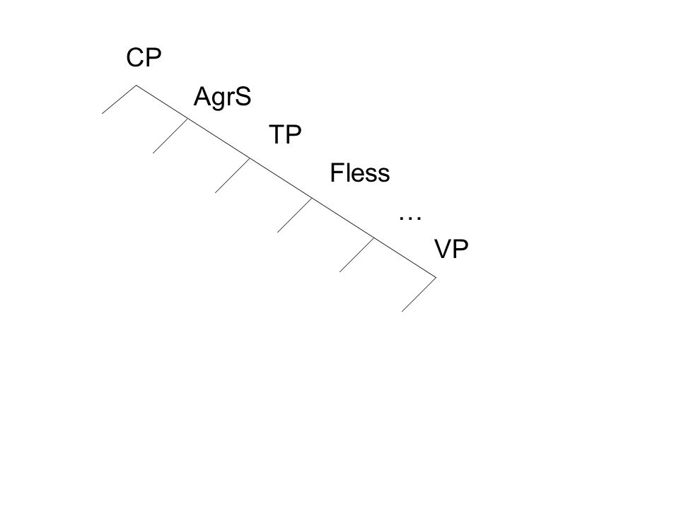 CP AgrS TP Fless … VP