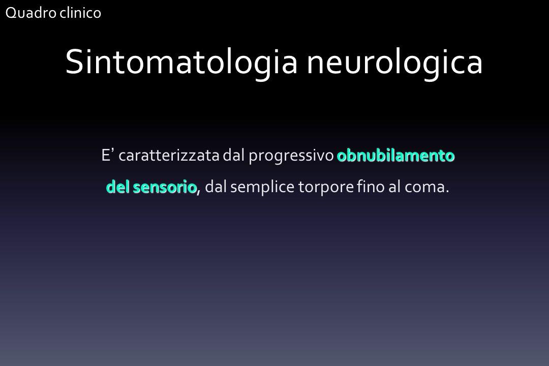 Sintomatologia neurologica obnubilamento del sensorio E caratterizzata dal progressivo obnubilamento del sensorio, dal semplice torpore fino al coma.