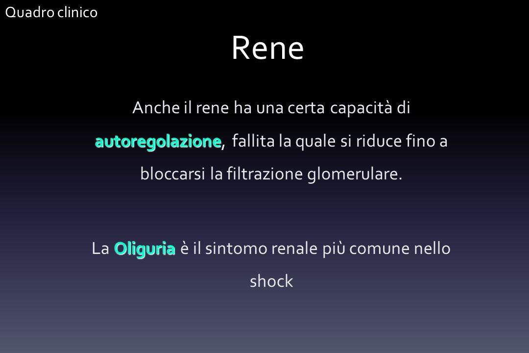 Rene autoregolazione Anche il rene ha una certa capacità di autoregolazione, fallita la quale si riduce fino a bloccarsi la filtrazione glomerulare. O