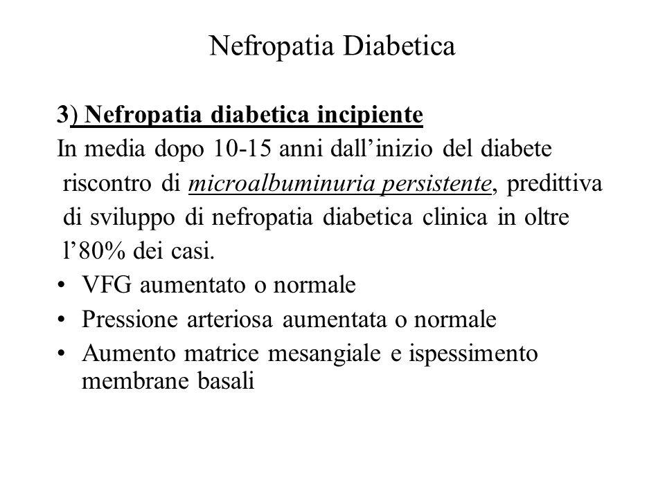 Nefropatia Diabetica 3) Nefropatia diabetica incipiente In media dopo 10-15 anni dallinizio del diabete riscontro di microalbuminuria persistente, pre