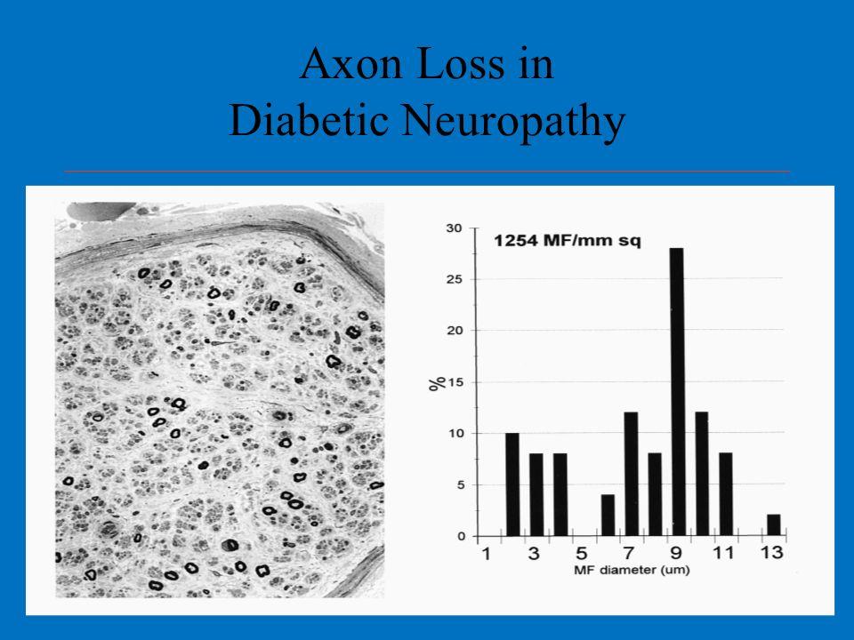 Axon Loss in Diabetic Neuropathy
