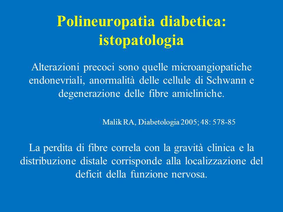 Polineuropatia diabetica: istopatologia Alterazioni precoci sono quelle microangiopatiche endonevriali, anormalità delle cellule di Schwann e degenera