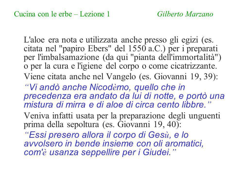 Cucina con le erbe – Lezione 1 Gilberto Marzano L aloe era nota e utilizzata anche presso gli egizi (es.