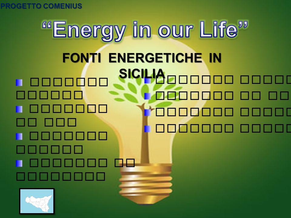 Energia Termica Energia da carbone Energia Idrica Energia Geotermica Energia Solare Energia da gas Energia Eolica Energia da biomassa FONTI ENERGETICH