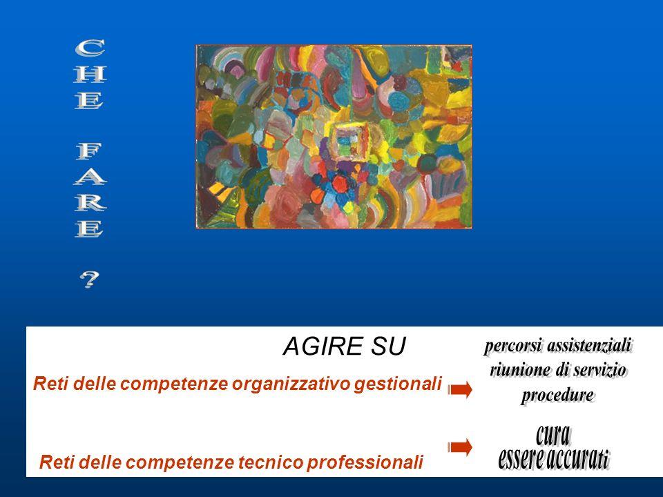 AGIRE SU Reti delle competenze organizzativo gestionali Reti delle competenze tecnico professionali