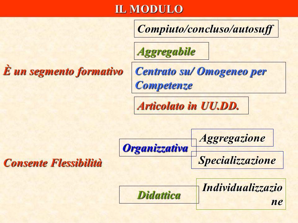 IL MODULO È un segmento formativo Compiuto/concluso/autosuff Aggregabile Centrato su/ Omogeneo per Competenze Articolato in UU.DD. Consente Flessibili