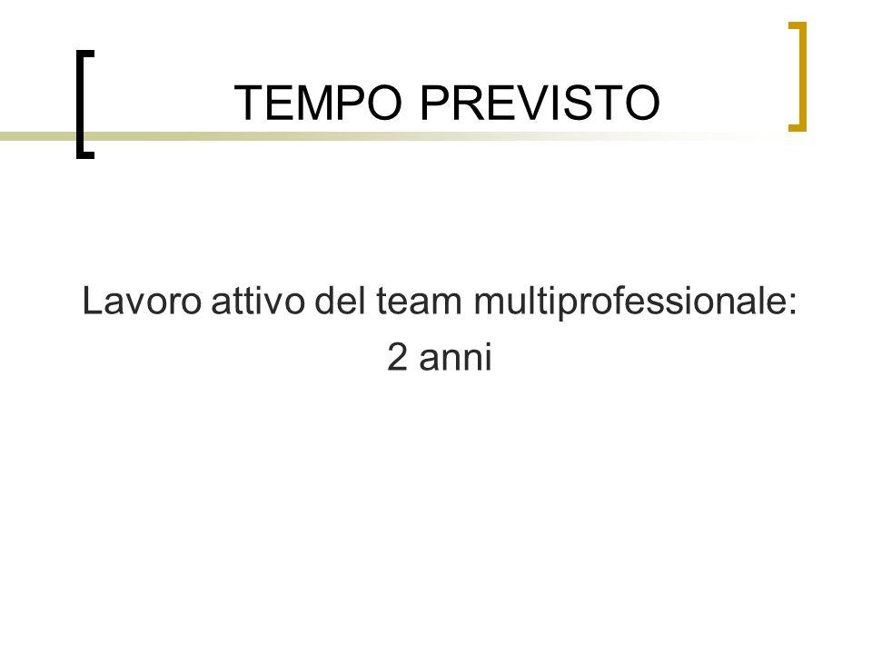 TEMPO PREVISTO Lavoro attivo del team multiprofessionale: 2 anni