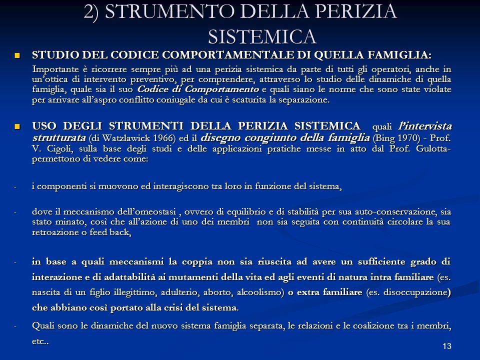 13 2) STRUMENTO DELLA PERIZIA SISTEMICA STUDIO DEL CODICE COMPORTAMENTALE DI QUELLA FAMIGLIA: STUDIO DEL CODICE COMPORTAMENTALE DI QUELLA FAMIGLIA: Im