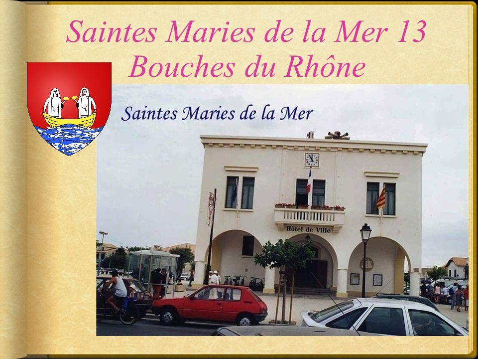 Saint Cannat 13 Bouches du Rhône
