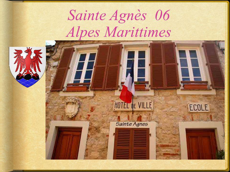 Saint Rémy de Provence 13 Bouches du Rhône