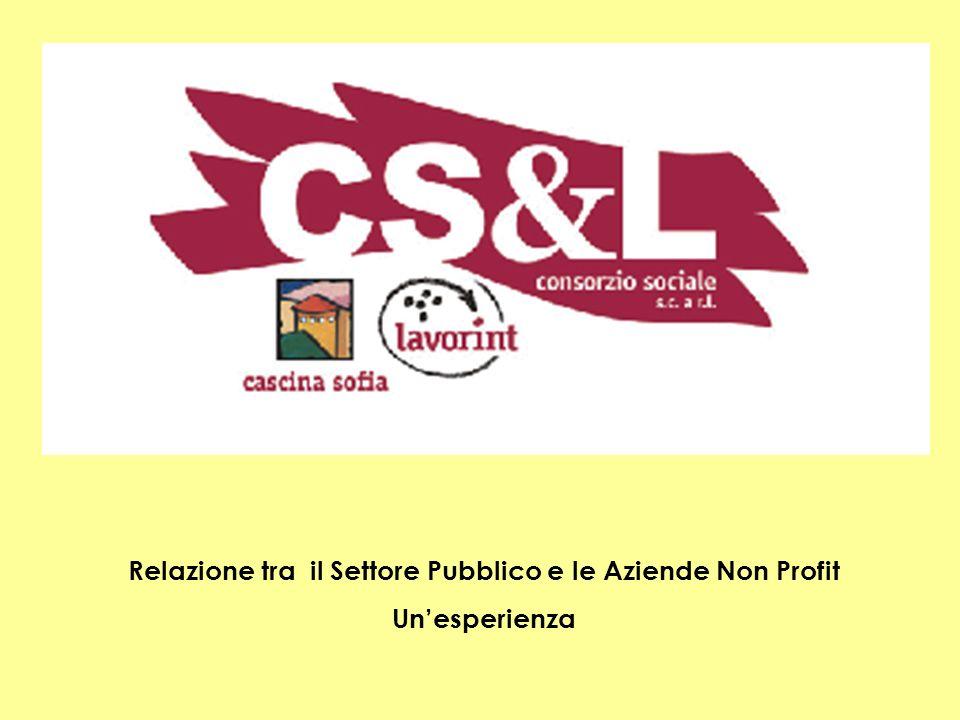 Relazione tra il Settore Pubblico e le Aziende Non Profit Unesperienza