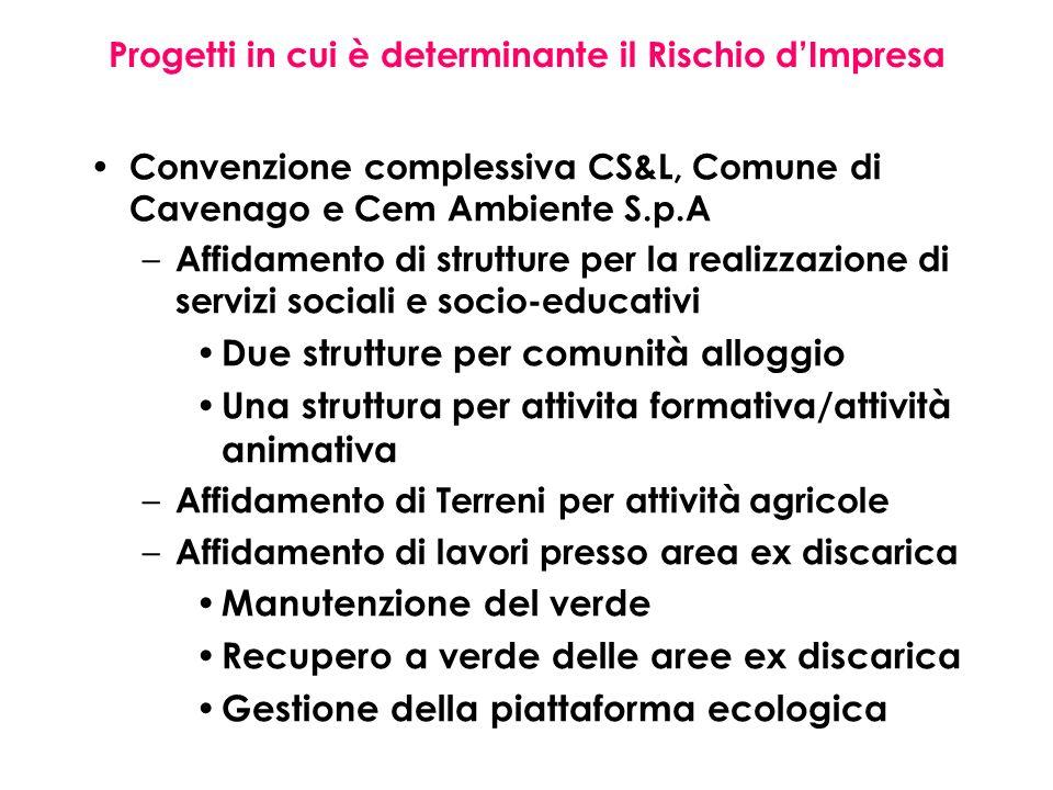 Progetti in cui è determinante il Rischio dImpresa Convenzione complessiva CS&L, Comune di Cavenago e Cem Ambiente S.p.A – Affidamento di strutture pe