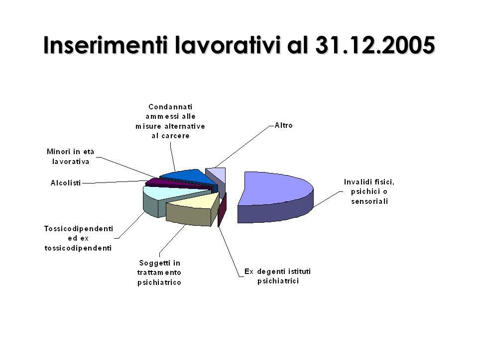 Inserimenti lavorativi al 31.12.2005