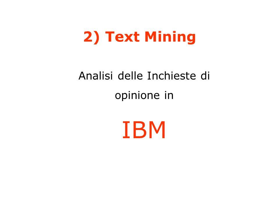 2) Text Mining Analisi delle Inchieste di opinione in IBM