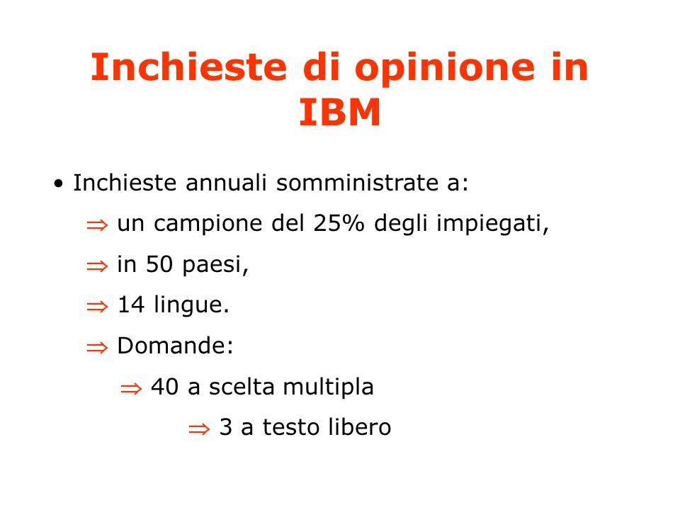 Inchieste di opinione in IBM Inchieste annuali somministrate a: un campione del 25% degli impiegati, in 50 paesi, 14 lingue.