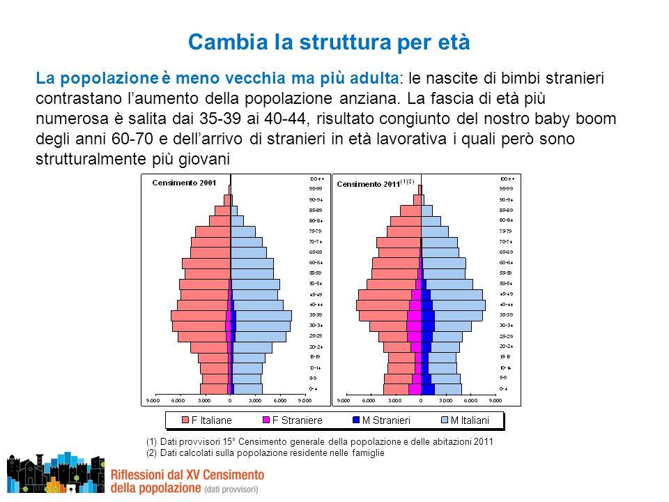 Cambia la struttura per età La popolazione è meno vecchia ma più adulta: le nascite di bimbi stranieri contrastano laumento della popolazione anziana.