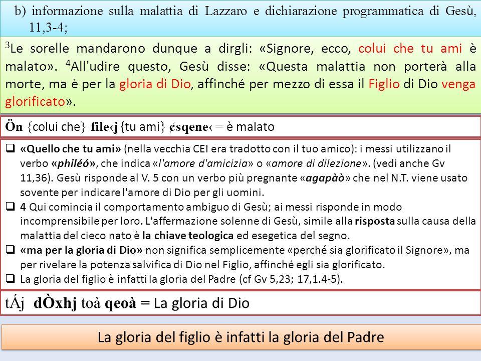 b) informazione sulla malattia di Lazzaro e dichiarazione programmatica di Ges ù, 11,3-4; 3 Le sorelle mandarono dunque a dirgli: «Signore, ecco, colu