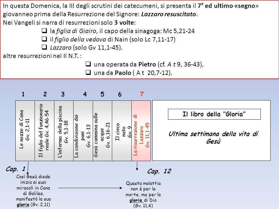 Le nozze di Cana Gv. 2,1-11 Linfermo della piscina Gv. 5,1-18 Il cieco nato Gv. 9 Il figlio del funzionario reale Gv. 4,46-54 1234567 Il libro della G