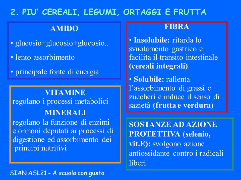 2. PIU CEREALI, LEGUMI, ORTAGGI E FRUTTA AMIDO glucosio+glucosio+glucosio.. lento assorbimento principale fonte di energia FIBRA Insolubile: ritarda l
