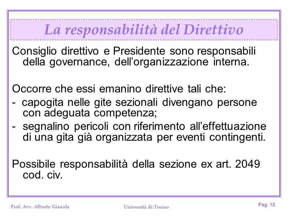 Prof. Avv. Alberto Gianola Università di Torino Pag. 12 Consiglio direttivo e Presidente sono responsabili della governance, dellorganizzazione intern