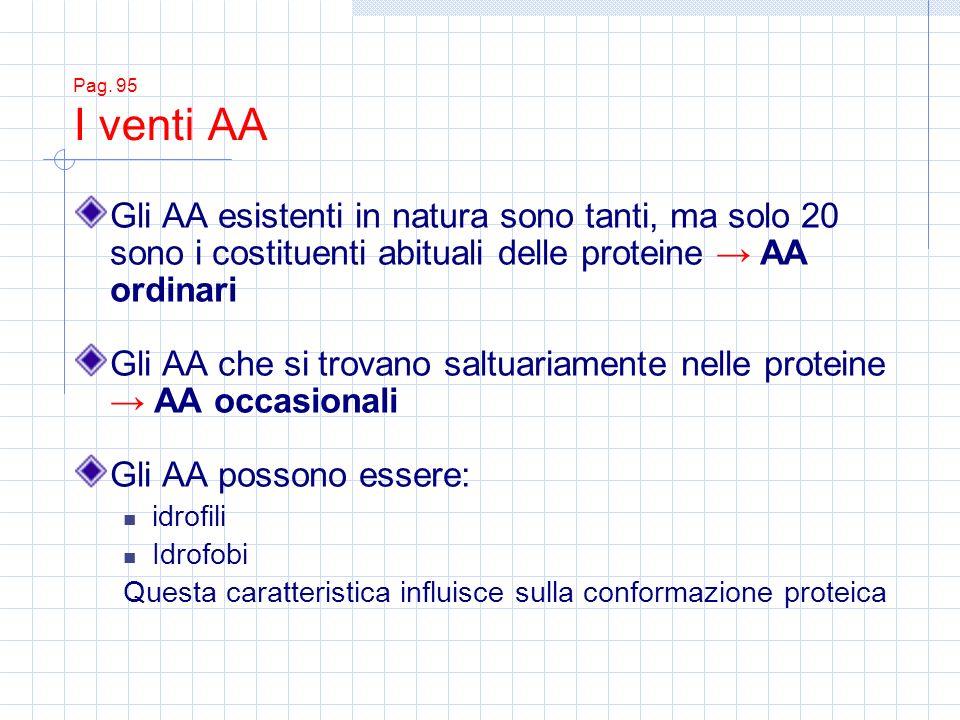 Pag. 95 I venti AA Gli AA esistenti in natura sono tanti, ma solo 20 sono i costituenti abituali delle proteine AA ordinari Gli AA che si trovano salt