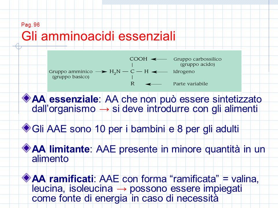 Pag. 96 Gli amminoacidi essenziali AA essenziale: AA che non può essere sintetizzato dallorganismo si deve introdurre con gli alimenti Gli AAE sono 10
