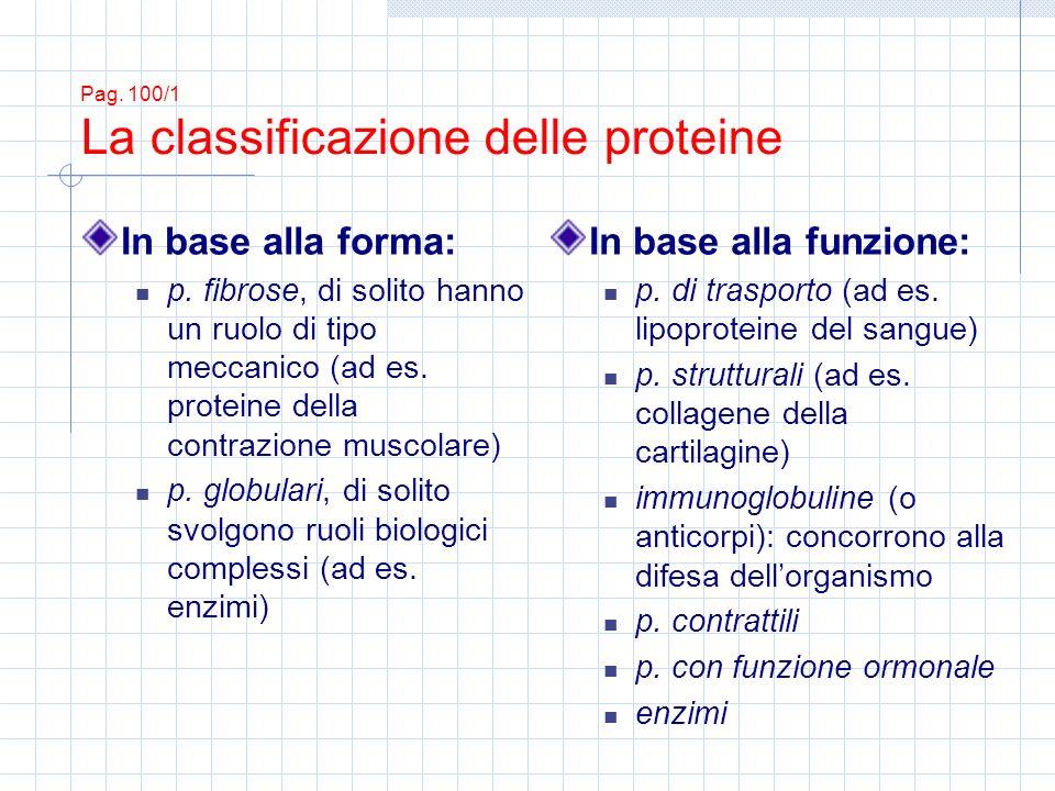 In base alla forma: p.fibrose, di solito hanno un ruolo di tipo meccanico (ad es.