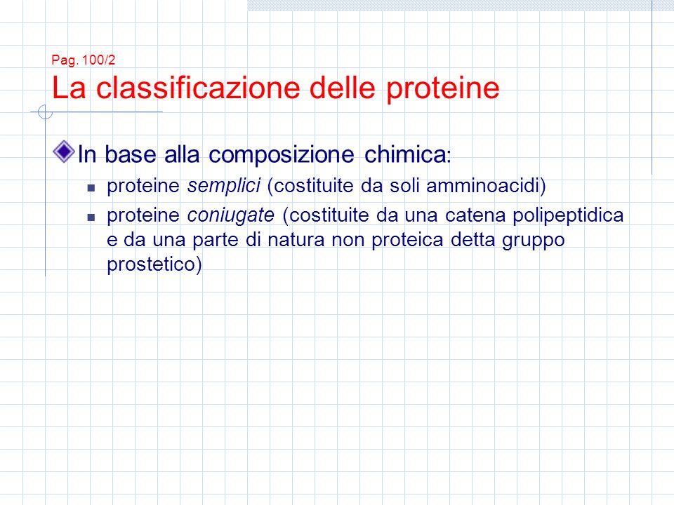 Pag. 100/2 La classificazione delle proteine In base alla composizione chimica : proteine semplici (costituite da soli amminoacidi) proteine coniugate